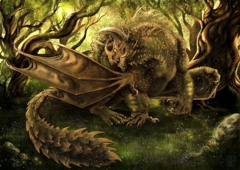 В отличие от других разновидностей этого знака водяные драконы обладают большим запасом терпения.