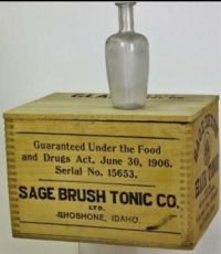 sagebrush hair tonic
