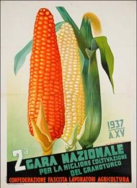 Themes Vintage illustrations/pictures - Poster with corn