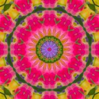 kaleidoscope 337 pink very large
