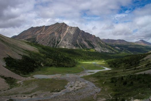 Brazeau River, Jasper National Park